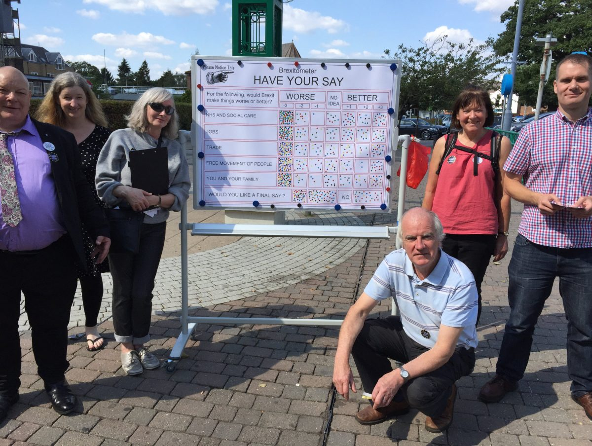 Swanley Brexitometer Analysis